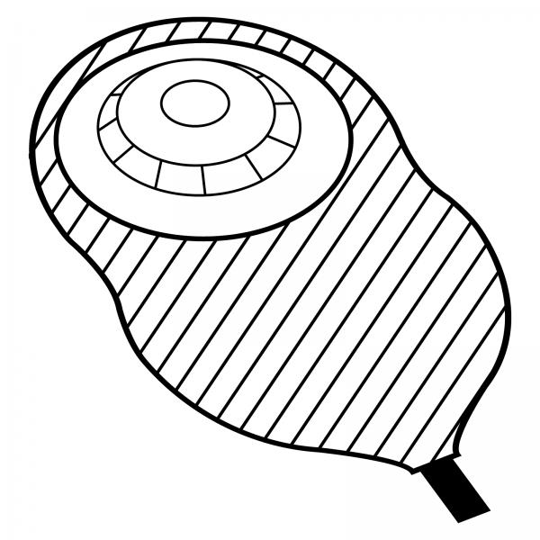 STOMOCUR® Urostomiebeutel Safe konvex